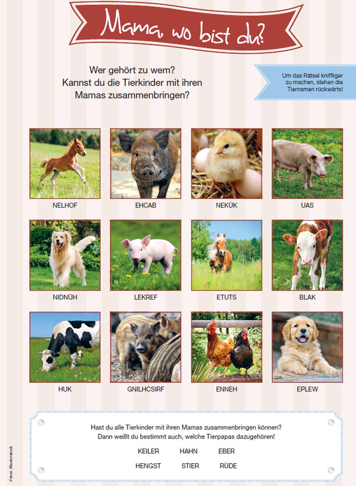 Tierisches Familien-Rätsel